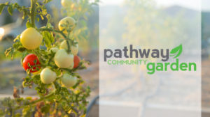 Community Garden Workday @ Pathway Church: Community Garden | Burleson | Texas | United States